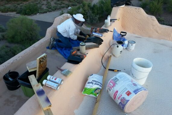 Bee Removal Repair Work in Scottsdale