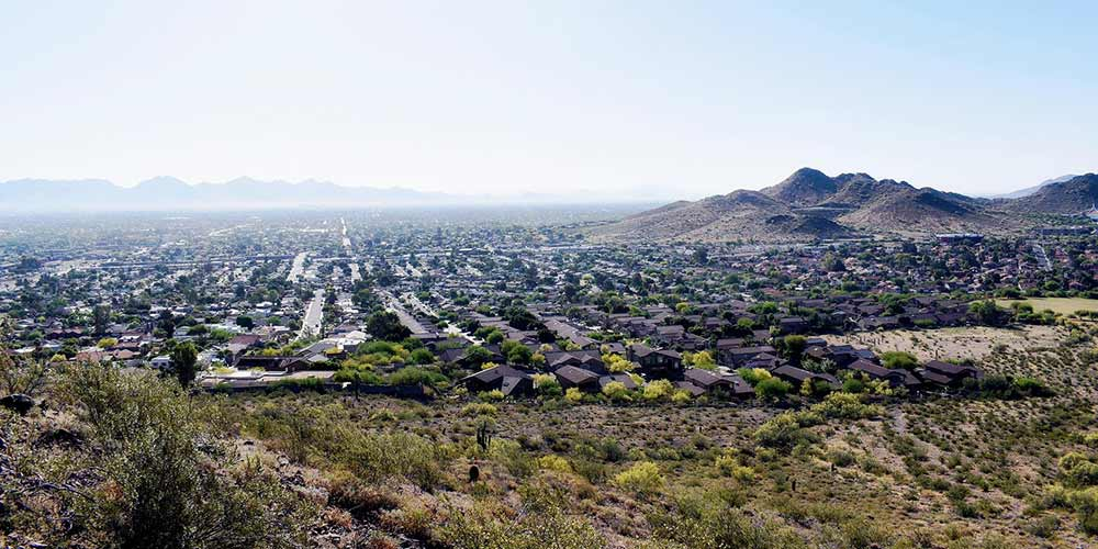 The Beehive Bee and Wasp Removal West Valley Cities